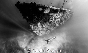 Freediving one of the many wrecks in Coron Bay . Photo ta... by Catalin Craciun