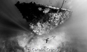Freediving one of the many wrecks in Coron Bay . Photo ta... by Catalin Craciun