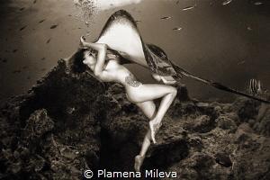 The last dance by Plamena Mileva