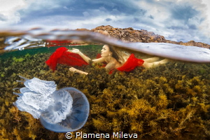 See in the Black sea by Plamena Mileva