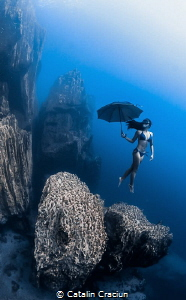 """Under my Umbrella""  taken on breath hold in Barracuda La... by Catalin Craciun"