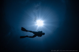 F R E E D O M Shark Point Lombok (Gili), Indonesia. May... by Irwin Ang