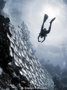 Slippery Slope  Sail Rock, Thailand by Stefan Follows
