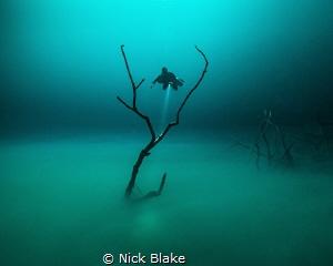 'Angelita' by Nick Blake