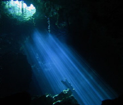 We are PADI Master Divers. Have dove in many cenotes in t... by Darrell Logan