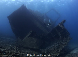Giannis D in the Red Sea is usually photographed from the... by Andrew Mckelvie