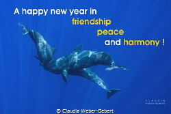 A happy new year to all members! by Claudia Weber-Gebert