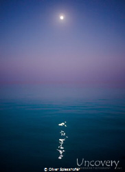 Full moon over quiet waters by Oliver Spiesshofer
