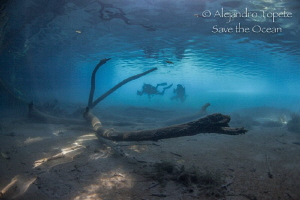 Divers in river, Las Estacas Mexico by Alejandro Topete