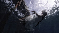 Fallen. Olympus TG4 by Khow Jin Chee