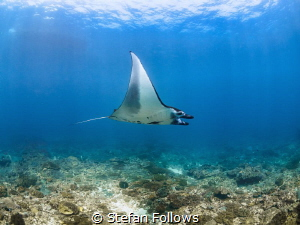 In flight entertainment 