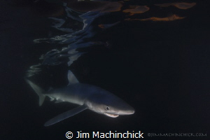The very last sliver of red light from the sun and a curi... by Jim Machinchick