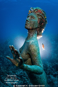 Mermaid statue at Sunset House, Grand Cayman  I used a ... by Susannah H. Snowden-Smith