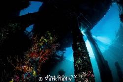 Busselton jetty by Mark Reilly