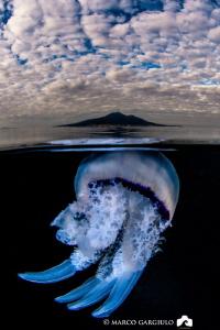 Jellyfish under the Vesuvius by Marco Gargiulo