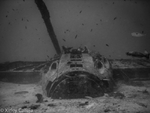 the bristol beaufighter WWII plane wreck by Shirley Calleja
