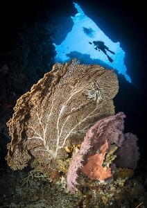 Hukurila Cave. Ambon, Indonesia by Tony Cherbas