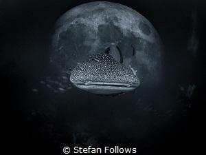 Three things cannot be long hidden: the sun, the moon, an... by Stefan Follows