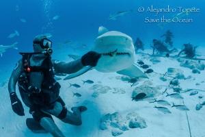 Jaws with Octavio, Playa del Carmen México by Alejandro Topete