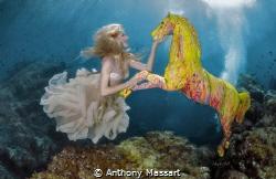 Underwater Riding by Anthony Massart