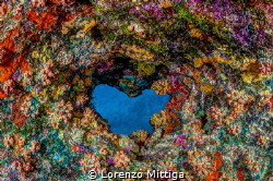 A heart-shaped hole in a coral cave ceiling, Bonaire Island. by Lorenzo Mittiga