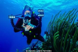 Diver friend by Marcelo Lunardi Ferronato