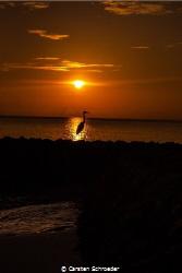 Sunsowner by Carsten Schroeder