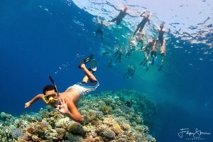 """""""Follow the guide!"""" The Blue hole, Dahab, Red Sea. by Filip Staes"""