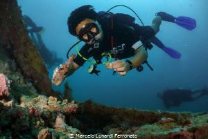 Diver in the wreck by Marcelo Lunardi Ferronato