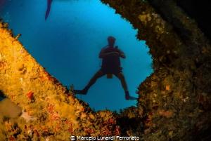 Diving  window by Marcelo Lunardi Ferronato
