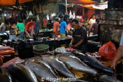 Sorong Fish Market by Morgan Ashton