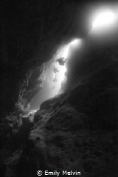 Into the Light Taken at Blue Hole, Andros Bahamas by Emily Melvin