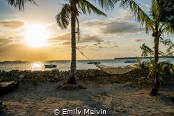 R&R at Sunrise View of the Hammocks at Sunrise, Small Ho... by Emily Melvin