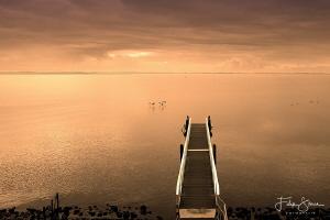 Early morning view over the Grevelingen, Zeeland, The Net... by Filip Staes