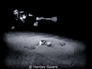 Night Dive Exploration by Henley Spiers