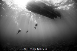Ascending Divers Ascending after a dive at Small Hope Ba... by Emily Melvin