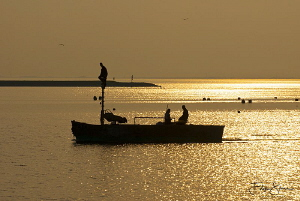 """Fishermen"", Oosterschelde, Zeeland, The Netherlands by Filip Staes"