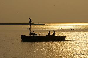"""""""Fishermen"""", Oosterschelde, Zeeland, The Netherlands by Filip Staes"""