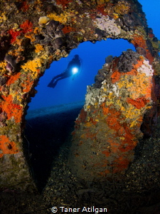 Propeller of the Lundy wreck, which is an English minelay... by Taner Atilgan