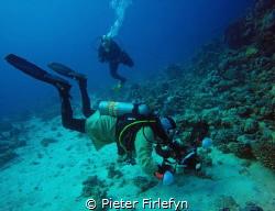 The last dive was in bathrobe by Pieter Firlefyn