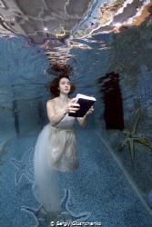 Book... by Sergiy Glushchenko