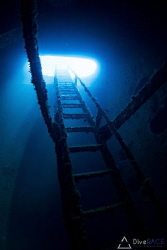 Taken within Igara wreck. The stairway up onto the deck a... by Lionel Lim