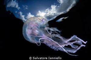 Safe navigation by Salvatore Ianniello