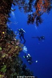 St. Johns Reef. by Sergiy Glushchenko