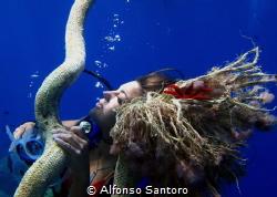 Sogno by Alfonso Santoro