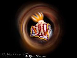 Shot with canon S120 by Ajiex Dharma