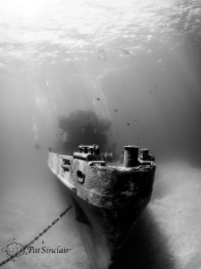 Diving on the Kittiwake, I wanted to show a large portion... by Patricia Sinclair