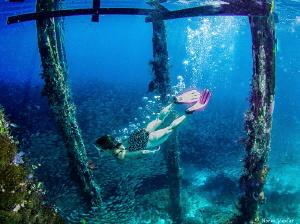 Free diving at Arborek by Norm Vexler