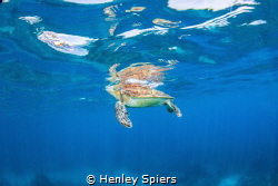 Take a Breath by Henley Spiers