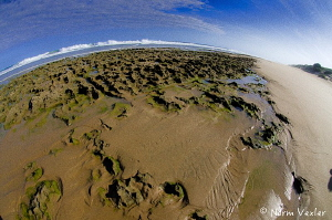 Surface interval at Zavora Beach in Mozambique by Norm Vexler